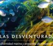 CE0X DESVENTURADAS-620x400